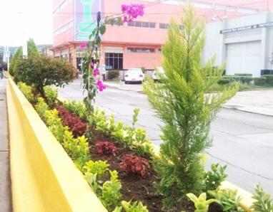 Parques y jardines de tulancingo rehabilitadas con for Programa para disenar jardines